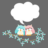 Cute owl couple with speech bubble background
