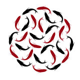 Carp, set of koi carps, red and black fish. Hand drawn circle fishes.