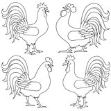 Set of four Rooster outlines