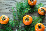 Fresh persimmons with fir branch