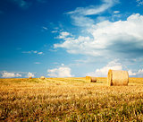 Summer Farm Scenery with Field and Haystacks
