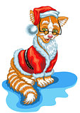 Cat Santa Claus. Christmas illustration