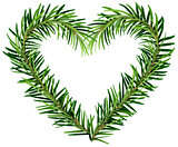 Green fir branch wreath heart shape