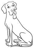 grea dane purebred dog
