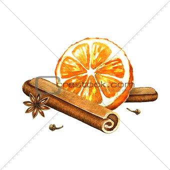 Slice of orange, cinnamon and star anise. Watercolor illustratio