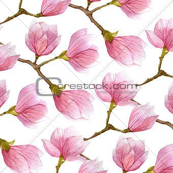 watercolor background with blossom magnolia branches. spring design.