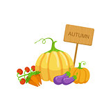 Vegetable Crops As Autumn Attribute
