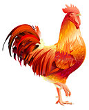 Red Rooster symbol 2017 by Chinese calendar