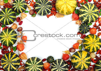 Autumn pumpkins on white