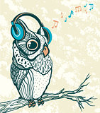 Graphic owl with headphones. Music vector.