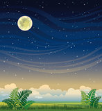 Summer night landscape.