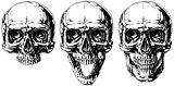 Set of graphic black and white human skull tattoo