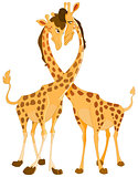 Giraffes in love
