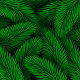 Elegant Christmas background seamless from green fir tree branches. Vector illustration for your design. Forest texture