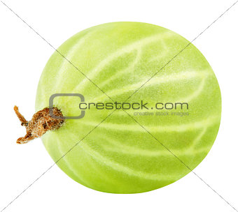 Green gooseberry on white