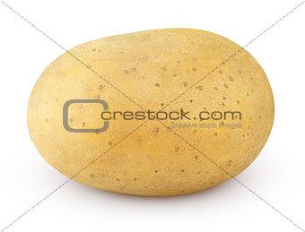 Potato isolated on white