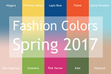 Blurred fashion infographic with trendy colors of the 2017 Spring. Niagara,Primrose Yellow,Lapis Blue,Flame,Island Paradise,Pale Dogwood,Greenery,Pink Yarrow,Kale,Hazelnut. Gradient mesh