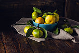 Yellow-green Tangerines Still Life