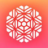 Vector Decorative Mandala Ornaments Logo Illustration