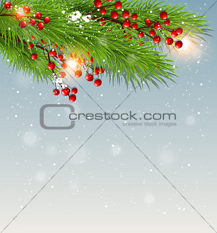 Green fir branch and red berries