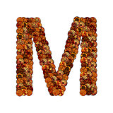 abstract vector font, made of ethnic elements - letter m