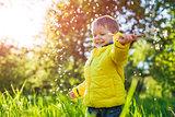 Portrait of a happy little boy holding dandelions