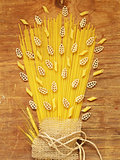 Still life from a different pasta, natural organic product