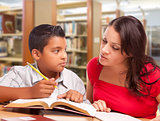 Hispanic Mother and Son Studying In Library