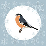 Christmas card bullfinch blue
