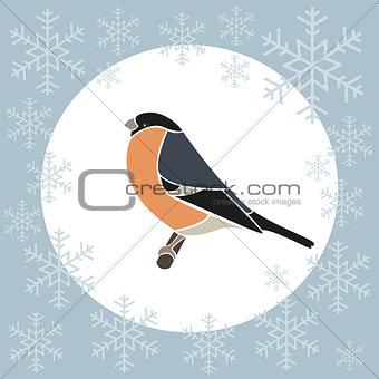 Christmas card bullfinch blue