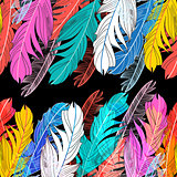 Background multicolored feathers