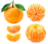 Photos group of tangerines