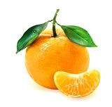Photo of tasty mandarin