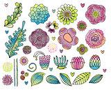 Vector floral set.