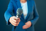 Elegant female journalist conducting business interview or press