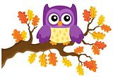 Autumn owl theme image 1
