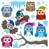 Winter owls thematic set 1