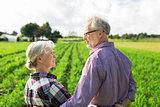 happy senior couple at summer farm