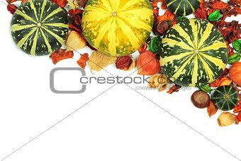 Autumn pumpkins on white