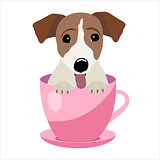 Jack Russell Terrier in pink teacup, illustration, set for baby fashion