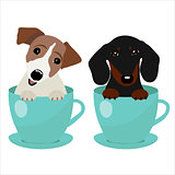 Jack Russell Terrier and Dachshund dog in blue teacup, illustration, set for baby fashion
