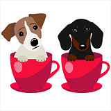 Jack Russell Terrier and Dachshund dog in red teacup, illustration, set for baby fashion