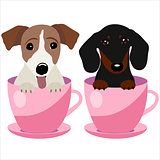 Jack Russell Terrier and Dachshund dog in pink teacup, illustration, set for baby fashion