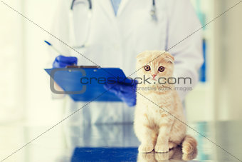 close up of vet with clipboard and cat at clinic