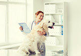 happy doctor with retriever dog at vet clinic
