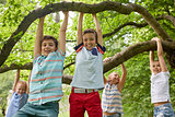happy kids hanging on tree in summer park