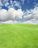 smooth green grass