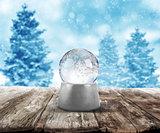 Xmas snow ball