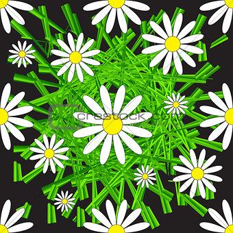 Chamomile and Grass Seamless Pattern