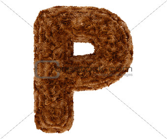 3d bushy bear fur alphabet capital letter P